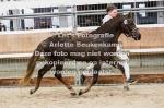 Asterhof's Magic Gold-21